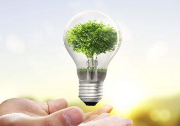 9 consejos de ahorro energético por Schneider Electric